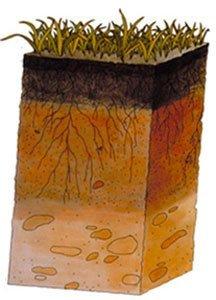 Расслоение почвы