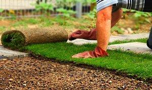 создание газона