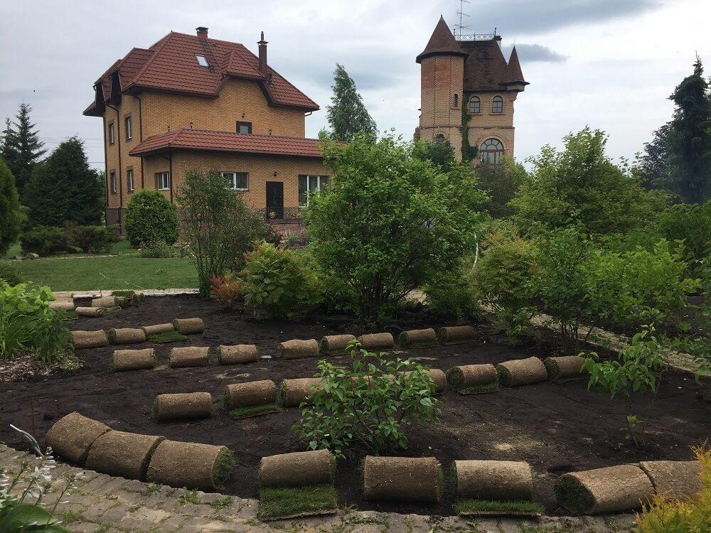 Технология создания газона