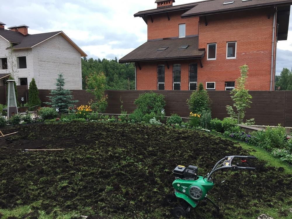 Как восстановить газон