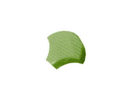 Чешуя Зеленый