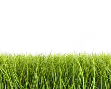 Выравнивание газона