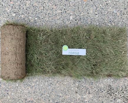 Дешевый рулонный газон