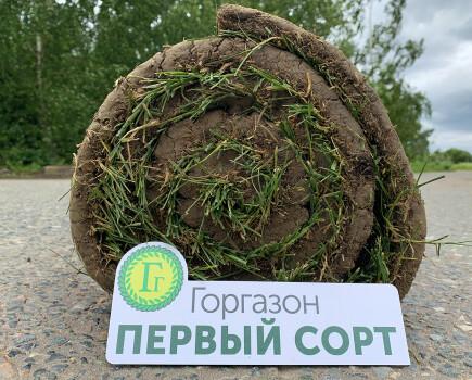Партерный рулонный газон Первый сорт